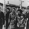 Poland Auschwitz Liberated Prisoners