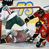 Wild Flames Hockey