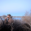 Tim Brass of Ft. Collins works his duck call at sunrise during a morning duck hunt near Jackson Lake State Park last week. An avid waterfowler, Brass has been watching the mallard migration increase throughout the past month in northeast Colorado.<br /> Scott Willoughby, The Denver Post