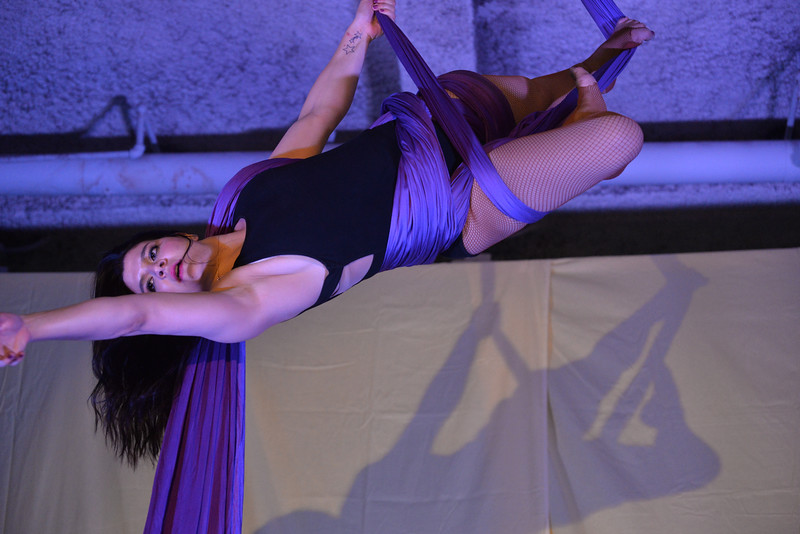 AERIAL  ARTS  NYC  2015    -    CATS  Gymnasium,  49th  Street,  Manhattan  NYC