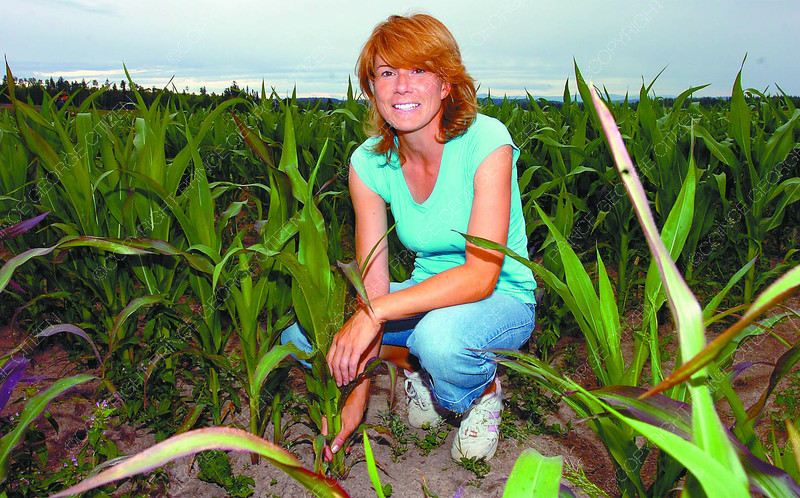 Laurie Dillman Corn/Wednesday Brent Braaten-July 25/2006  Laurie Dillman and her corn field.  To go with story by Frank on commercial corn field.