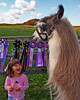 Second Place<br /> Llama & Girl<br /> Nic Provenzo