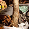 11-24-2011, MVC With Entrapment, Franklin Twp, Dutch Mill Rd  and Chestnut Ave  (C) Edan Davis, sjfirenews com (14)
