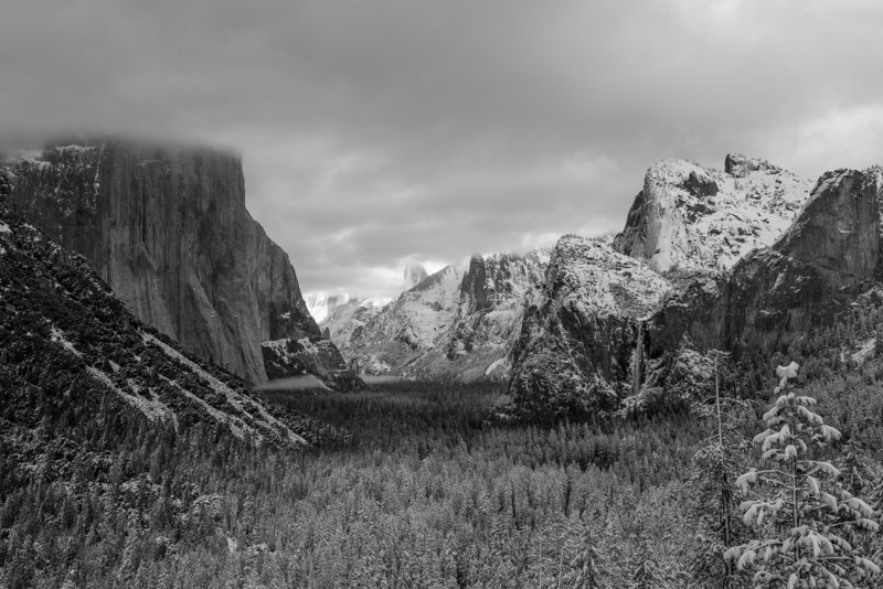 A black and white version of a snowy yosemite
