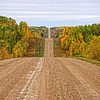 HM - Road Through Fall -  Amy Wildeman - SCC
