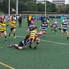 HKFC Festival of Mini Rugby (2014-03-09)