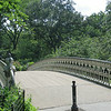 Beautiful bridge in Central Park