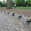 Make Way for Duckling