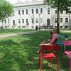 Chairs at Harvard Yard