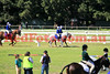14-08-23_Red_2695-A