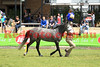 14-09-29_Red_56118-A