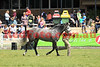 14-09-29_Red_56114-A