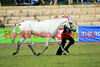14-09-29_Red_56463-A