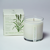 Freash Cut Grass Seeds Candle