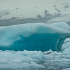 I thought this iceberg looked like a polar-bear. Do you see the resemeblence?!