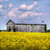 2H8A9898_899_900_901_902Harned KY Barn-Edit-Edit