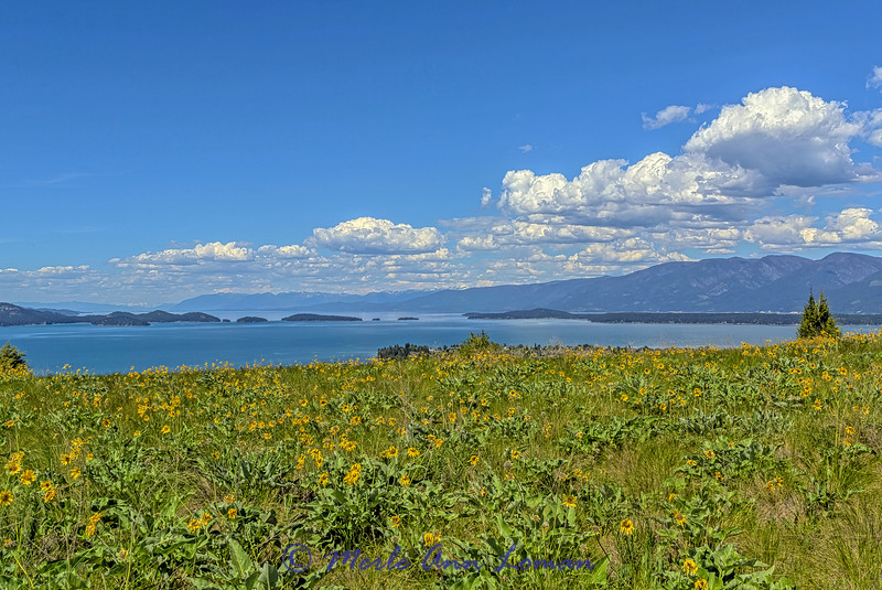 South shore of Flathead Lake in May IMG_5358