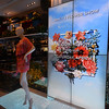 ART  IN  BLOOM   /     MACY'S  FLOWER  SHOW  2015   -      Herald  Square,  Manhattan  NYC