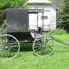 Amish Buggy in the Spring.
