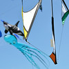 Kites of many colours