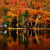 Beautiful Fall Reflection in a lake, Adirondack State Park.