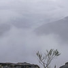 One last view of the Kedumba Valley in the miserable weather.