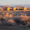 Jeeps Lined Up for Sundowner - Sossuslvei Lodge, Namibia