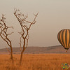 Hot Air Balloon Rising - Serengeti, Tanzania