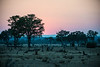 Sunset on the South Luangwa flood plain