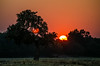 Sunset on the Luangwa