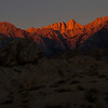 Mount Whitney with first pink of sunrise.