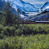 Train Ride from Anchorage to Seward