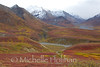 Fall Colors in Denali