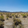 Panorama. Mono Basin - Lee Vining, CA, USA