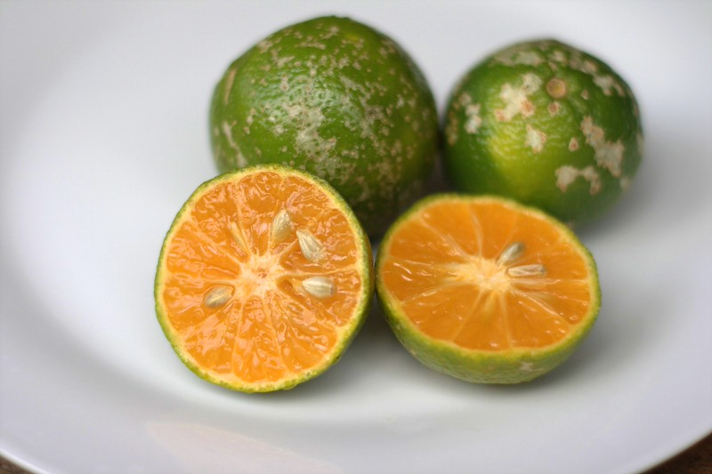 Limón mandarino, a sour tasting lime-like citrus fruit with orange flesh, tastes different than lime or lemon