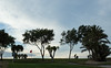 15 November 2014: Alicante Golf towards the end of the afternoon.