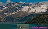 Views of Bald eagle and Humpback Whales and Harbor Seal within the John Hopkins Inlet of Glacier Bay National Park and Preserve (USA AK Gustavus)
