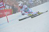 2013 Audi Birds of Prey FIS World Cup in Beaver Creek, CO, Men's Giant Slalom Frey Photo: Grafton Smith