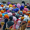 A Sea of Turbans, Amritsar