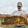 0822bees64