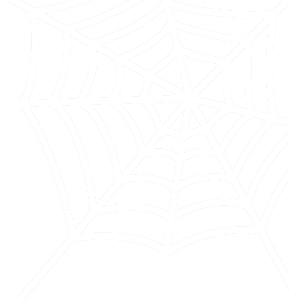 Spider web - white