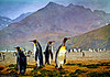 """Textured""  King Penguins"