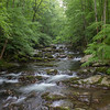 Big Creek is a stunning section of Great Smoky Mountains National Park on the North Carolina side of the Tennessee/ North Carolina border.