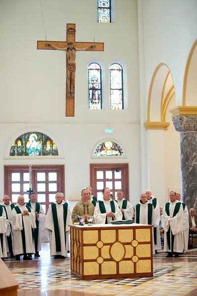 Br. Benedict Barthel (75), Fr. Rupert Ostdick (70), Fr. Vincent Tobin (60), Fr. Augustine Davis (60), Fr. Raymond Studzinski (50), Fr. Godfrey Mullen (25), and Fr. Cletus celebrated their profession jubilee on Sunday July 27, 2014.