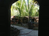 Back garden garden as seen thru courtyard arched door