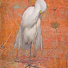 GREAT EGRET ON RUST