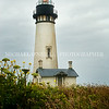Yaquina Head Lighthouse 1
