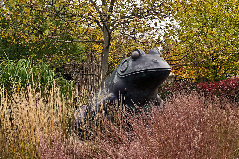 Frog or Toad (more complete ID to follow, eventually) . Lena Meijer Children's Garden Frederik Meijer Gardens and Sculpture Park, Grand Rapids, Michigan October 16, 2012