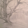 Tree(sketch), dec 25, 1962, pencil, 8 5x11