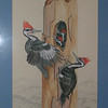 Pileated Woodpeckers, 1982 , mixed media, 16 5x26
